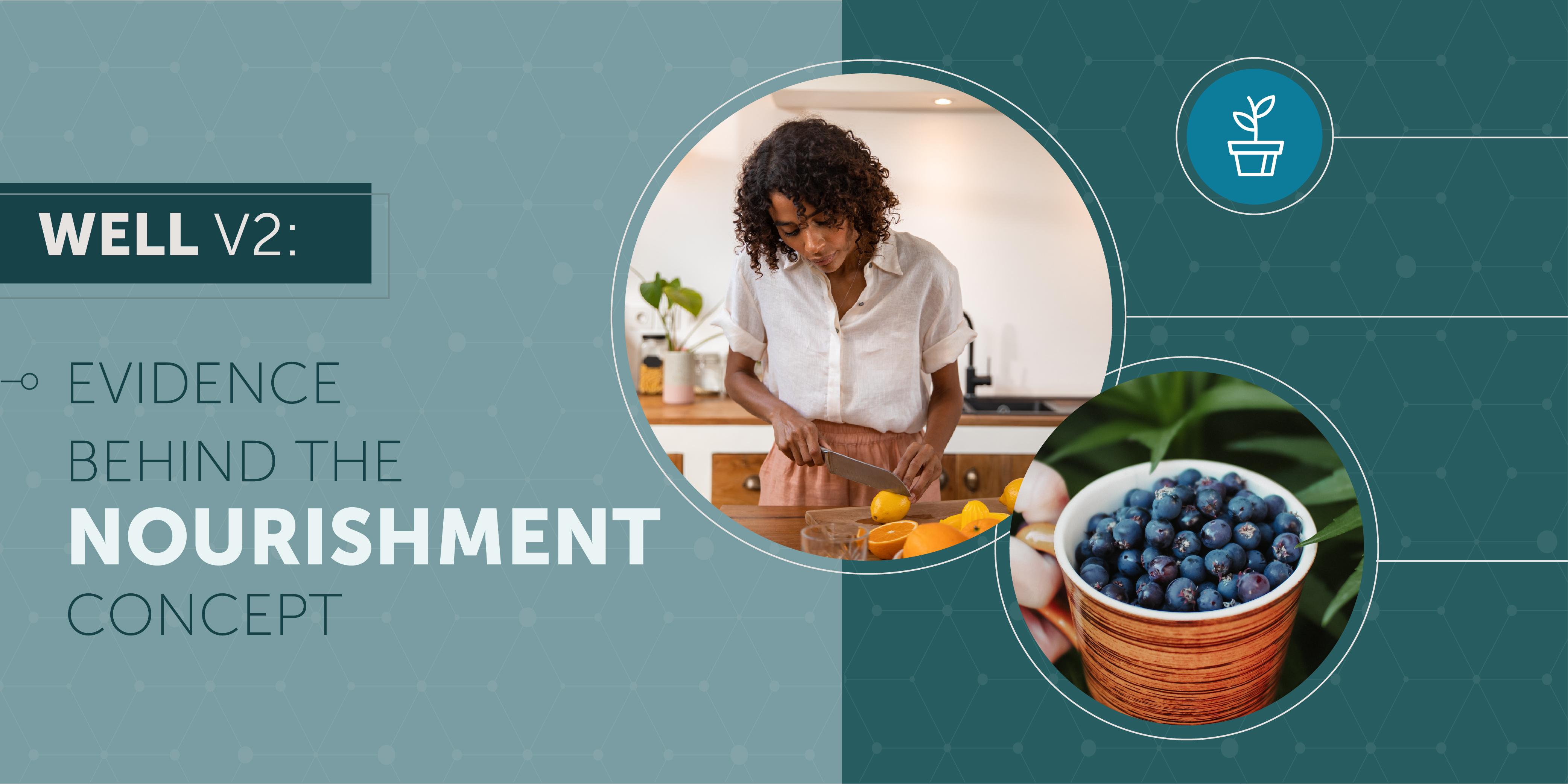 3-Nourishment